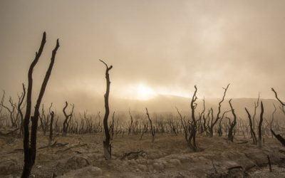 Consecuencias del Cambio Climatico en España