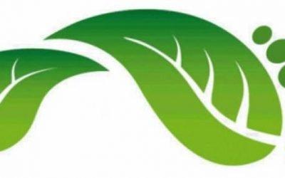 Cómo reducir la huella ecológica en España