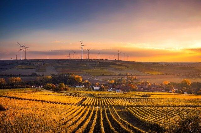 La realidad de la agricultura ecológica